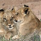 Brotherly love! by Anthony Goldman