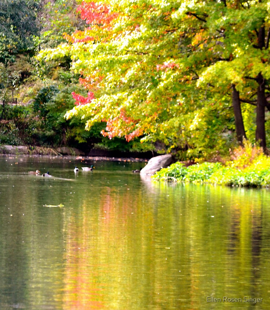 Autumn In Central Park by Ellen Rosen Singer