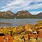 View to The Hazards, Freycinet National Park, Tasmania by TonyCrehan