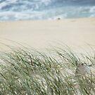 Sandy Grass by Shemah Appleton