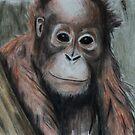 Wildlife Art by gogston
