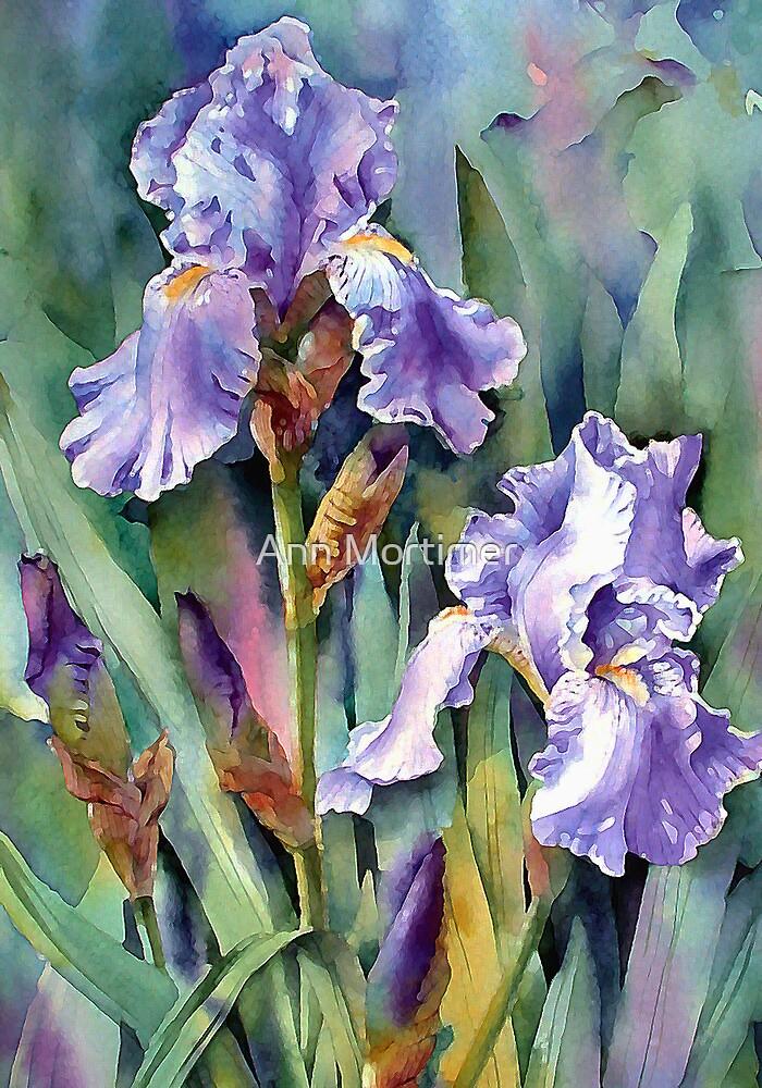 Blue Irises by Ann Mortimer