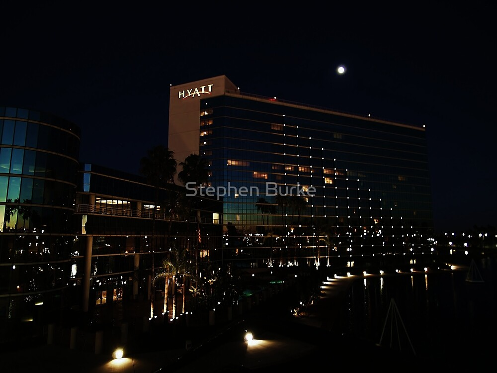 The Hotel by Stephen Burke