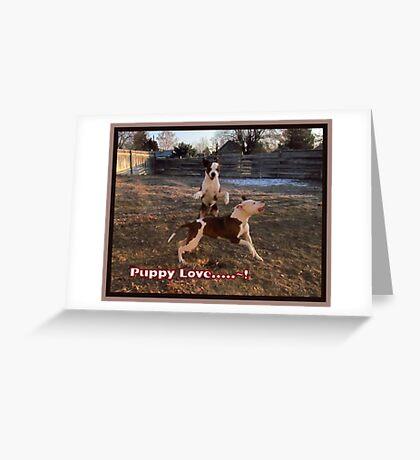 Buster and Sweetie- Fun, Fun, Fun~!!!! Greeting Card