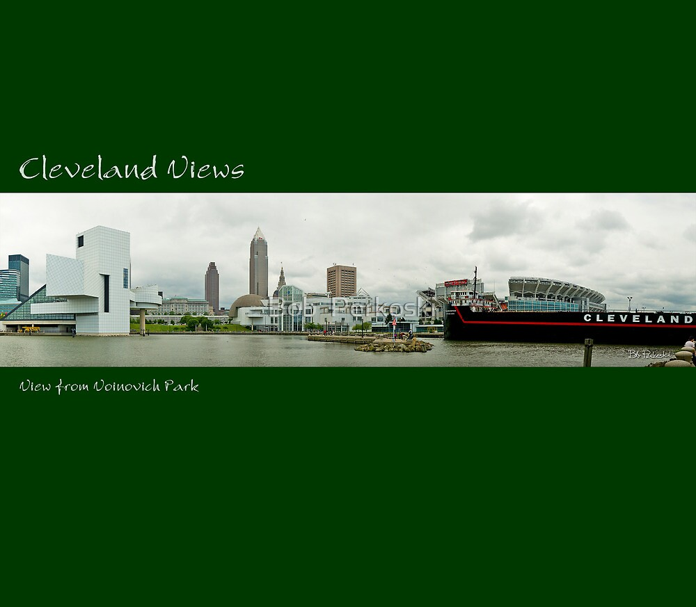 View of Cleveland from Voinovich Park by Bob  Perkoski