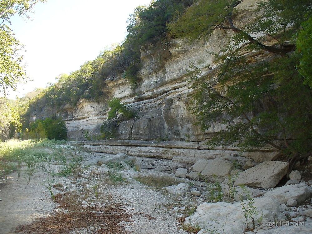 The Cliff  by marilittlebird