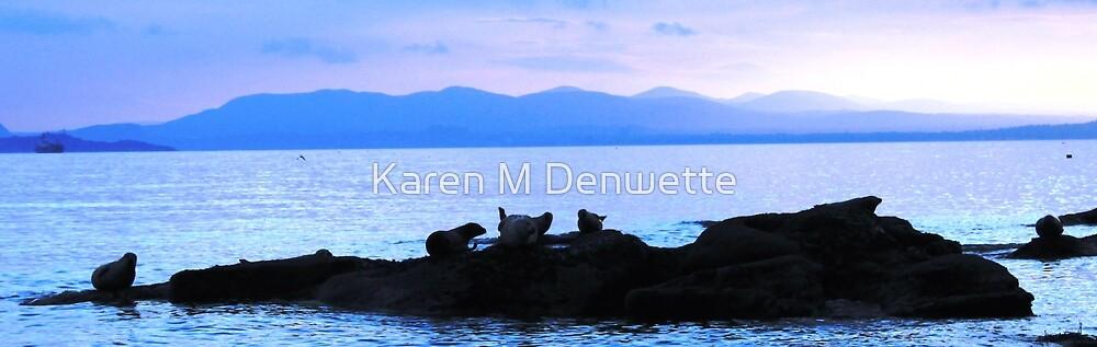 Dads Seals at West Wemyss by Karen M Purves www.artbykarenmpurves.moonfruit.com