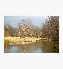 killbuck creek Photographic Print