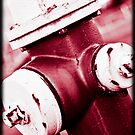 Red Hydrant by apsjphotography