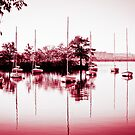 Red Boats by apsjphotography