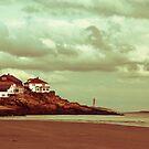 Good Harbor Beach by Dana DiPasquale