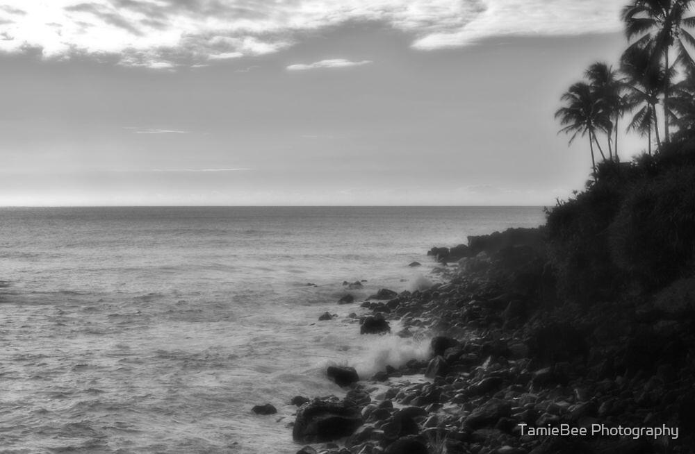 Waimea beach by TamieBee Photography