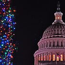 The Capitol at Christmas by michael6076