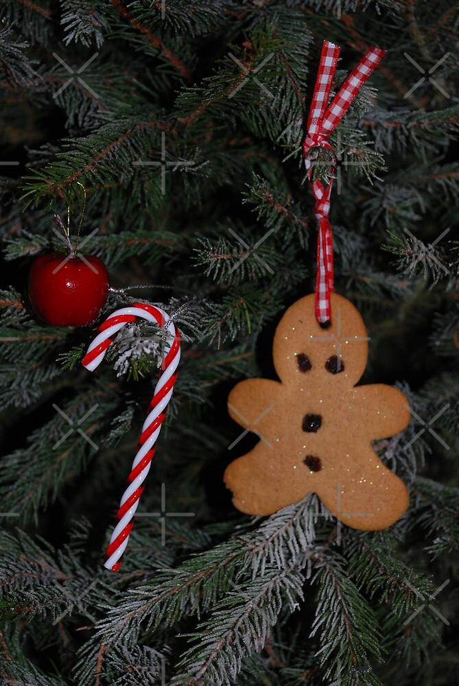 Gingerbread man by Ulla Vaereth