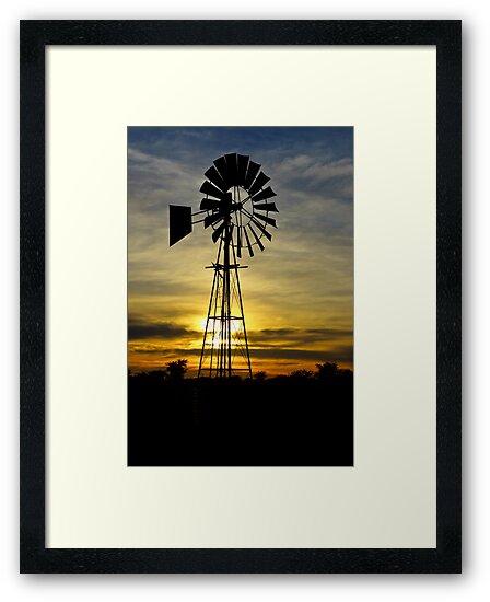 Farm Sunrise by Riaan Roux