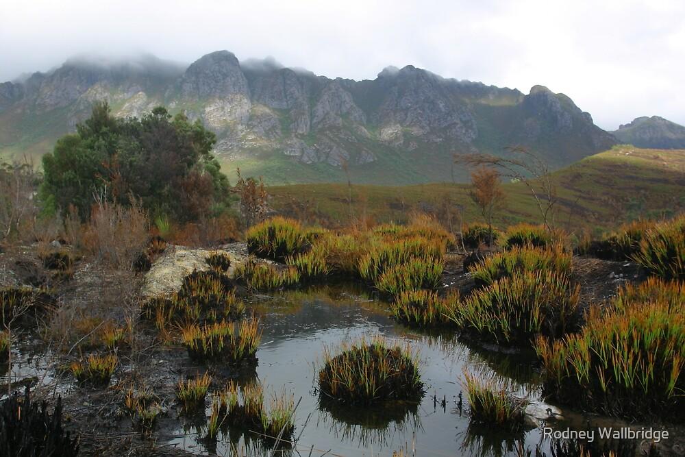 Crags Tasmania by Rodney Wallbridge