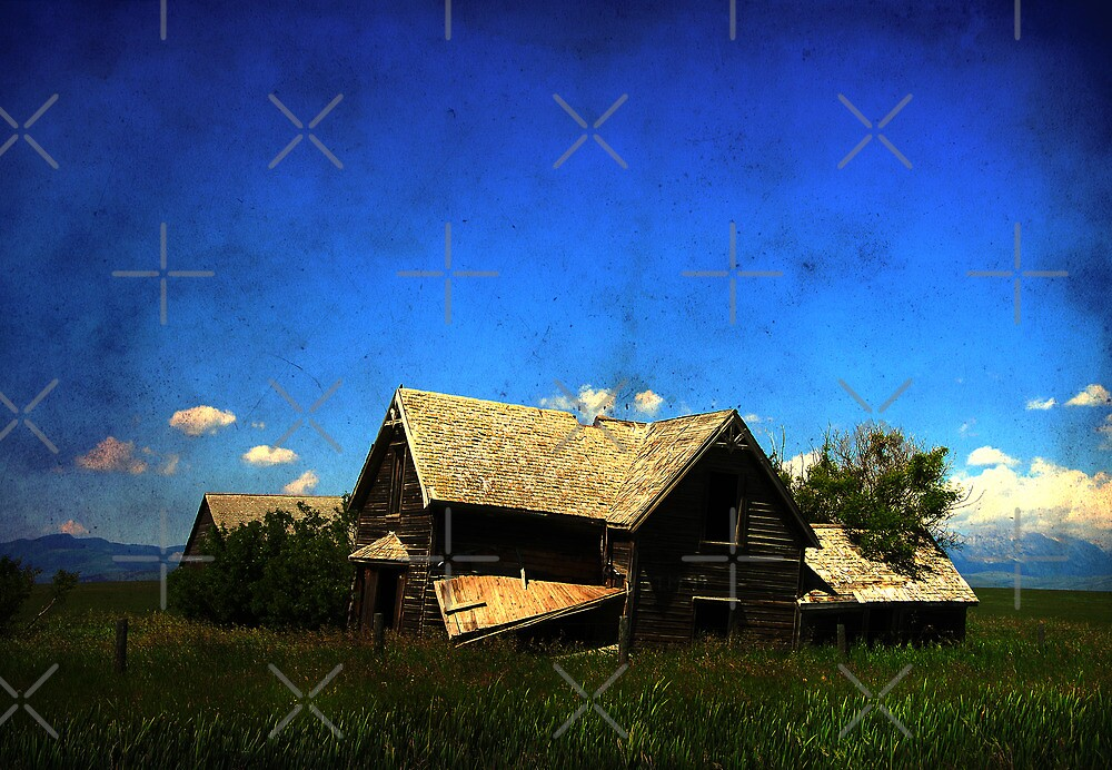 Dilapidated by Alyce Taylor