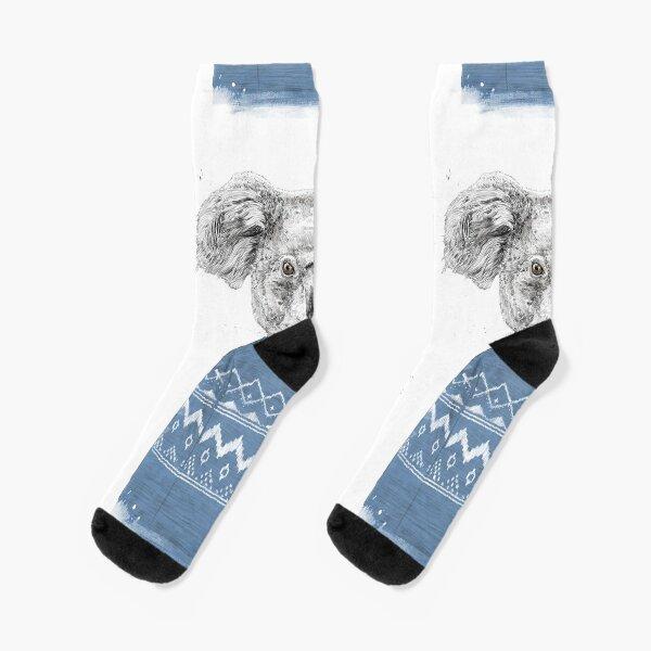 Winter koala Socks
