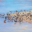 At the water's edge by John Rivera