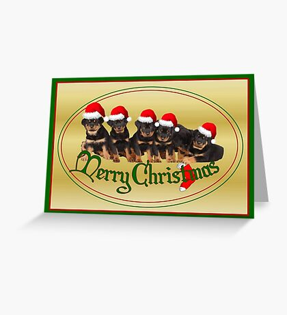 Cute Merry Christmas Rottweiler Puppies Greeting Card