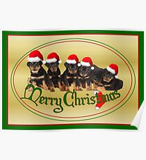 Cute Merry Christmas Rottweiler Puppies Poster