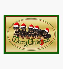 Cute Merry Christmas Rottweiler Puppies Photographic Print
