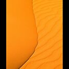 The Yin & Yan of the Sands iPhone Case by Peter Doré