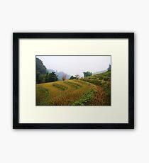 Sapa Framed Print