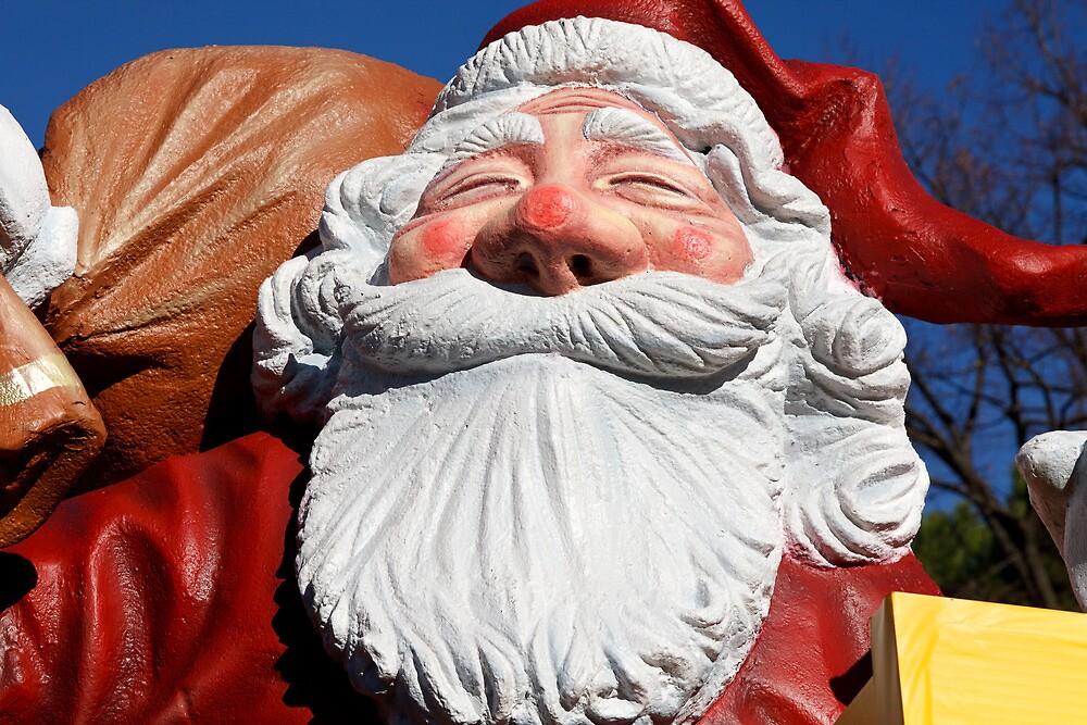Joy! Santa Claus has arrived by catiapancani