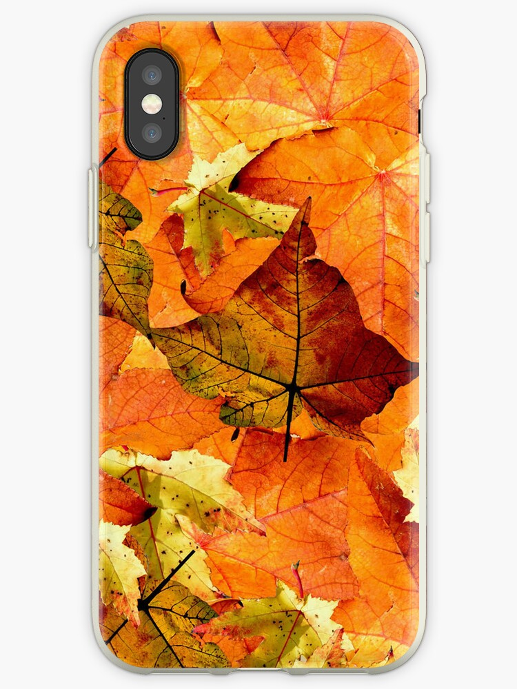 Autumn Leaves by Nick Martin