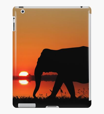 Journeys of my mind.. iPad Case/Skin