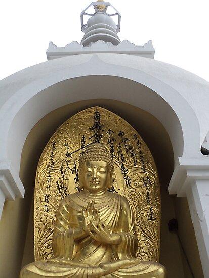 Buddha by Prem Pawar