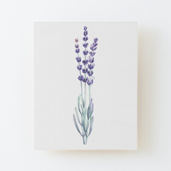 Watercolor lavender Wood Mounted Print