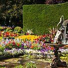 Italian Courtyard, Butchart Gardens by SusanAdey