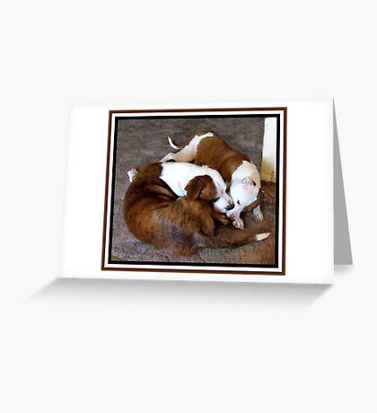 Kissy, Kissy Greeting Card