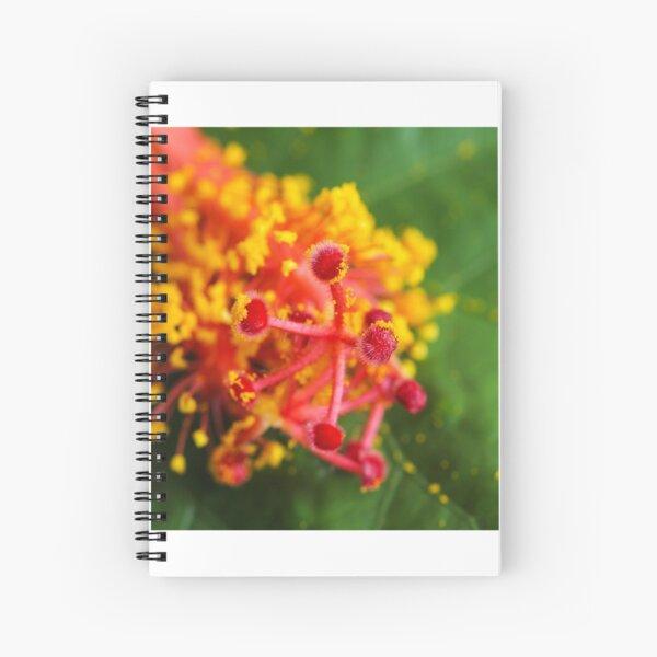 Hibiscus stamen macro Spiral Notebook