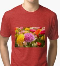 field of multicoloured cultivated Buttercup (Ranunculus) flowers Tri-blend T-Shirt