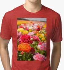 ield of multicolor cultivated Buttercup (Ranunculus) flowers Tri-blend T-Shirt