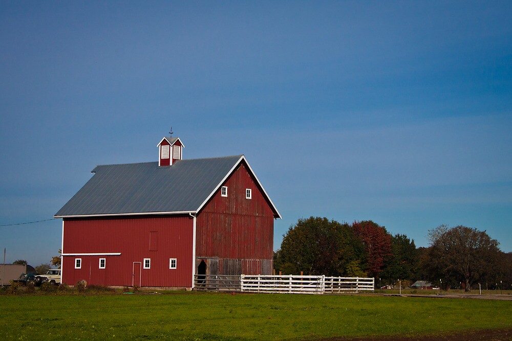 Red Barn In The Willamette Valley by Marvin Mast