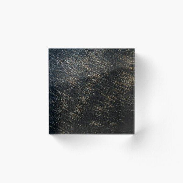 Brindle fur - black and golden Acrylic Block