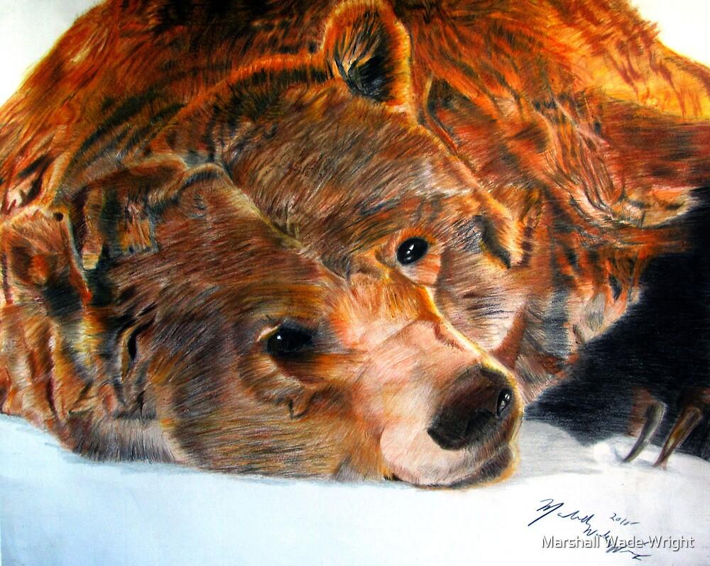 Lazy Bear by Marshall Wade Wright