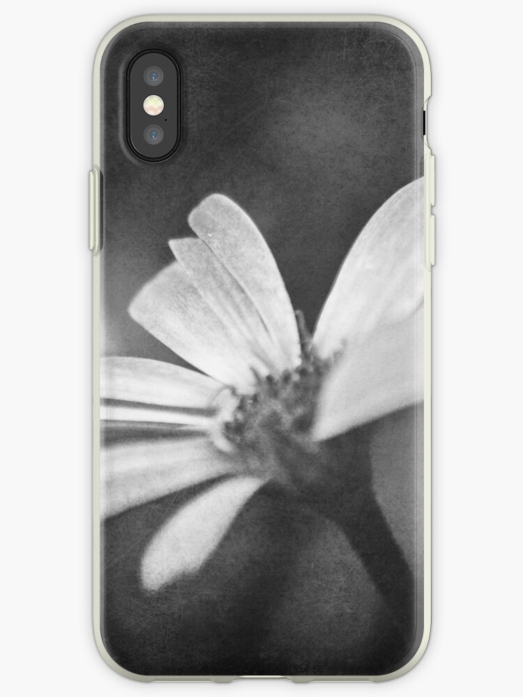 Under Haunted Skies iPhone Case by Denise Abé