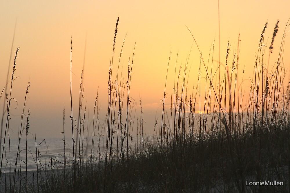 Perdido Key Sunset Oats by LonnieMullen