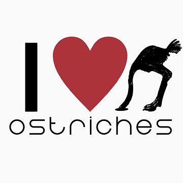 Ostriches by samuelyee
