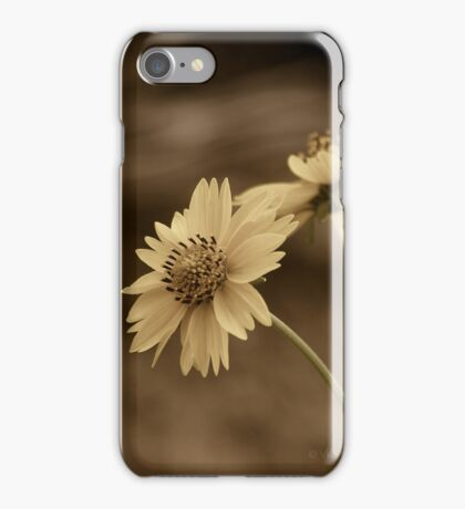 Suspended in Time - iPhone Case iPhone Case/Skin