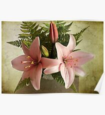 Two Pink Oriental Lilies Poster