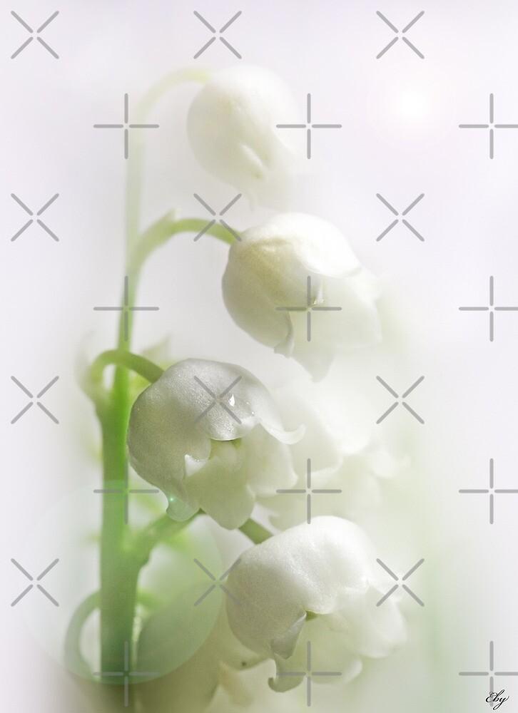The white light by EbyArts
