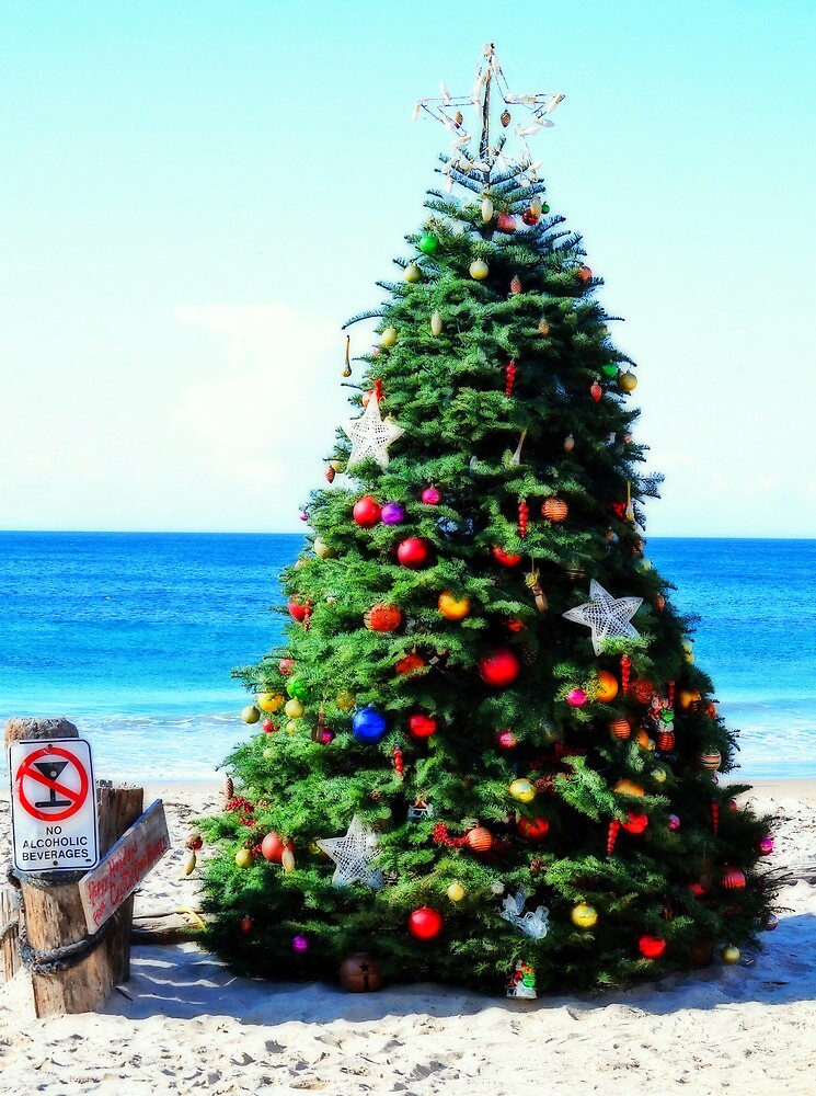 california christmas by Matt Goldberg