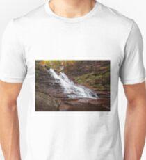 F. L. Ricketts After October Rain T-Shirt