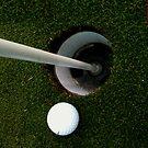 Golf Case by brennanpearson